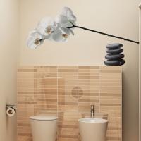 Orchidee mit Flußsteinen - Wandsticker