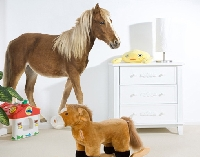 WandTattoo No.136 Pony