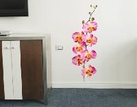 WandTattoo No.177 Orchidee Rosa II