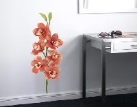WandTattoo No.179 Orchidee Rot I