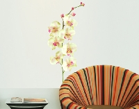 WandTattoo No.190 Orchidee Weiß II