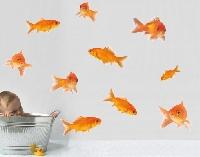 WandTattoo No.256 Fisch Set 10-teilig