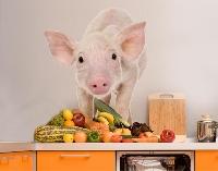 WandTattoo No.269 Staunendes Schweinchen