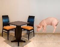 WandTattoo No.270 Suchendes Schweinchen