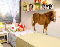 WandTattoo No.309 Shetland Pony