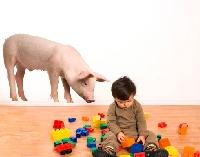 WandTattoo No.355 Neugieriges Schweinchen