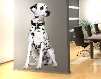 WandTattoo No.361 Sitting Dalmatian