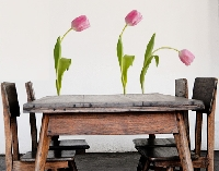 WandTattoo No.SB29 Tulpen Set III