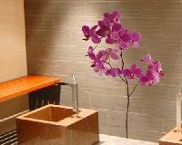 WandTattoo No.SB57 Orchidee I