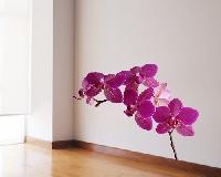 WandTattoo No.SB58 Orchidee II