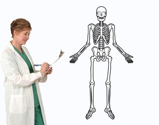 Wandtattoo Skelett
