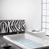 Zebra - Möbelsticker